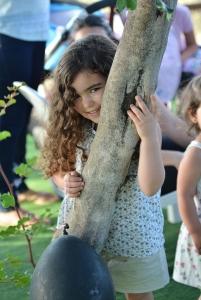 אירועים בחצר